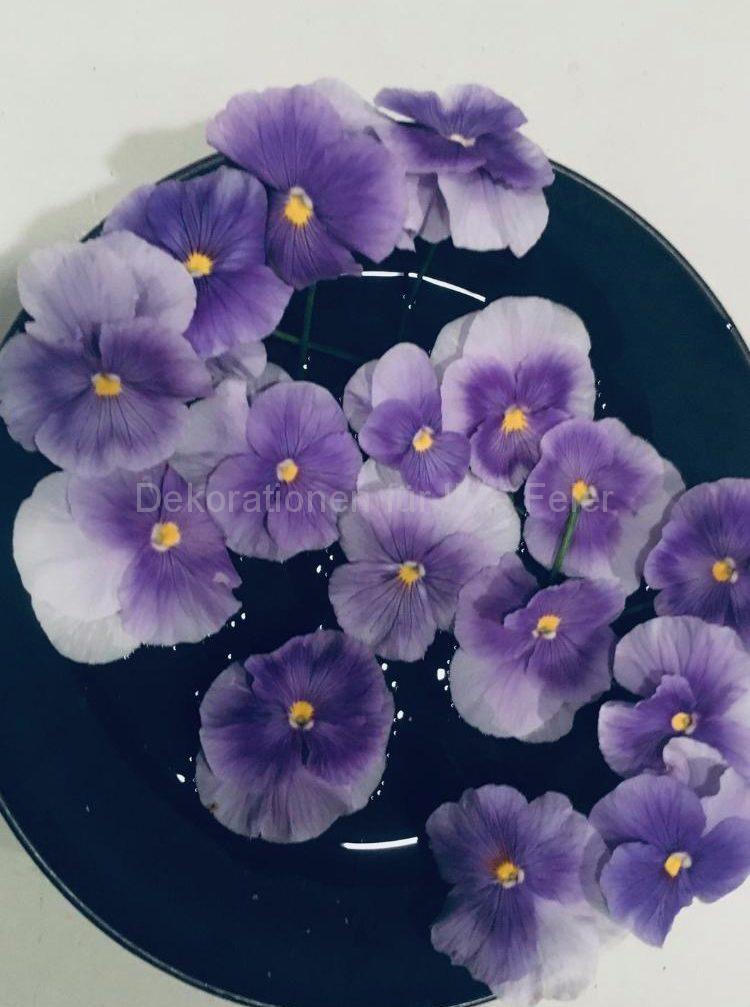 Ein schwarzer Teller mit wenig Wasser und blau-Violetten Stiefmütterchen Köpfchen unregelmäßig auf dem Teller verteilt .Grosser Kontrast mit wenig Aufwand
