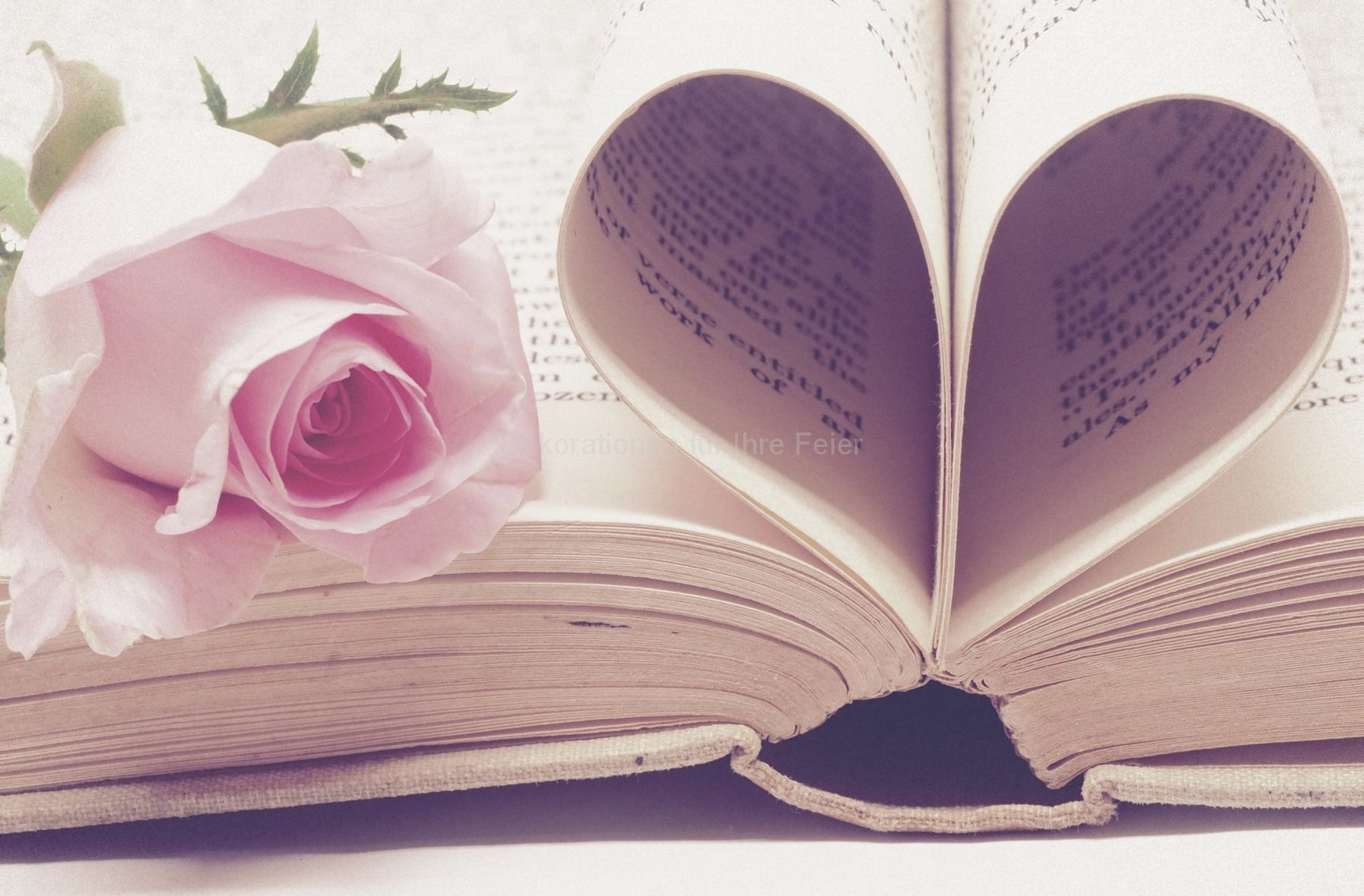Bild eines Buches, die Seiten als Herz geformt, mit einer rosa Rose auf dem Buch